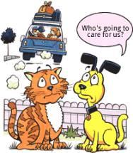 Pet worries